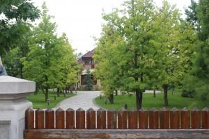 vila lui Liviu dragnea