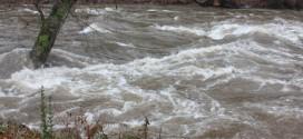 Cod Portocaliu pe râurile din bazinul superior al Vedei – Situaţia hidrometeorologică