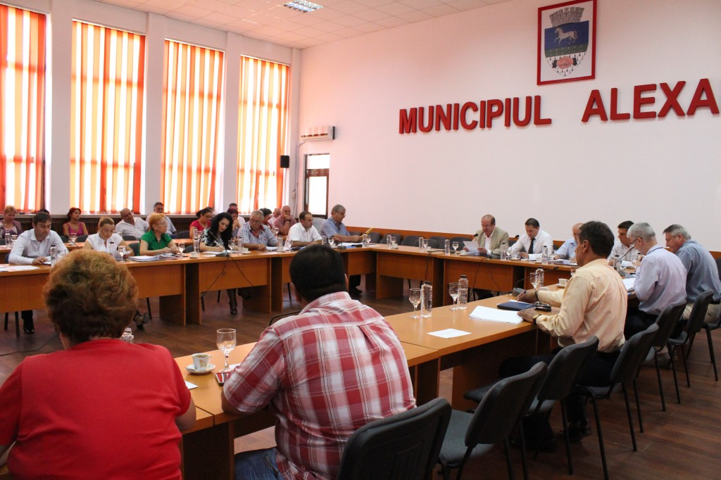 consiliul local alexandria