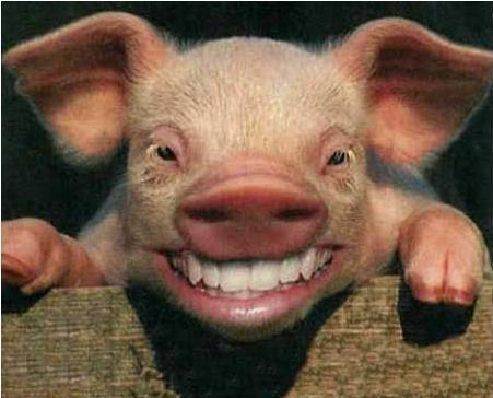 pomana porcului