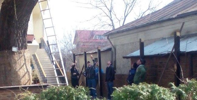 Foto: Rușinică, domnu' Tăbăcitu, să tăiați salcia din obor cu angajații ADP!
