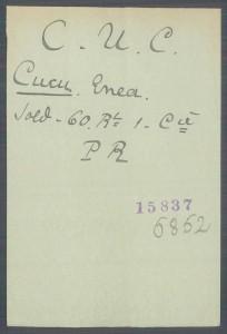 card Cucu Enea