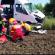 Accident grav între Furculești și Turnu. 10 victime, printre care și un copil