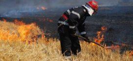 Numărul incendiilor de vegetație uscată și miriște, în scădere cu 48% față de anul trecut