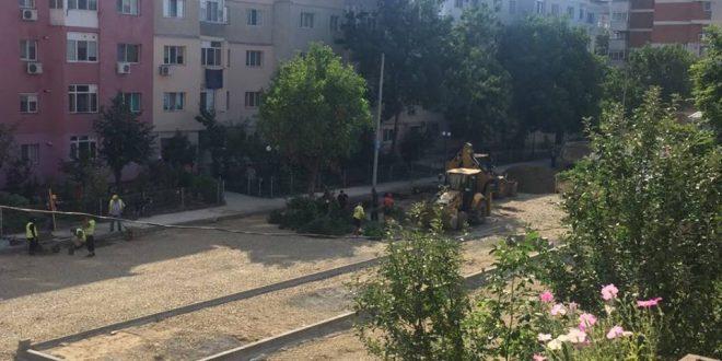Video: Alți pomi tăiați în cartierul I-uri