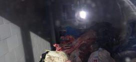 """Apel disperat al unui cetățean din Frăsinet: """"Cei de la DSV mi-au luat carnea și au băgat-o în sacoșă"""""""