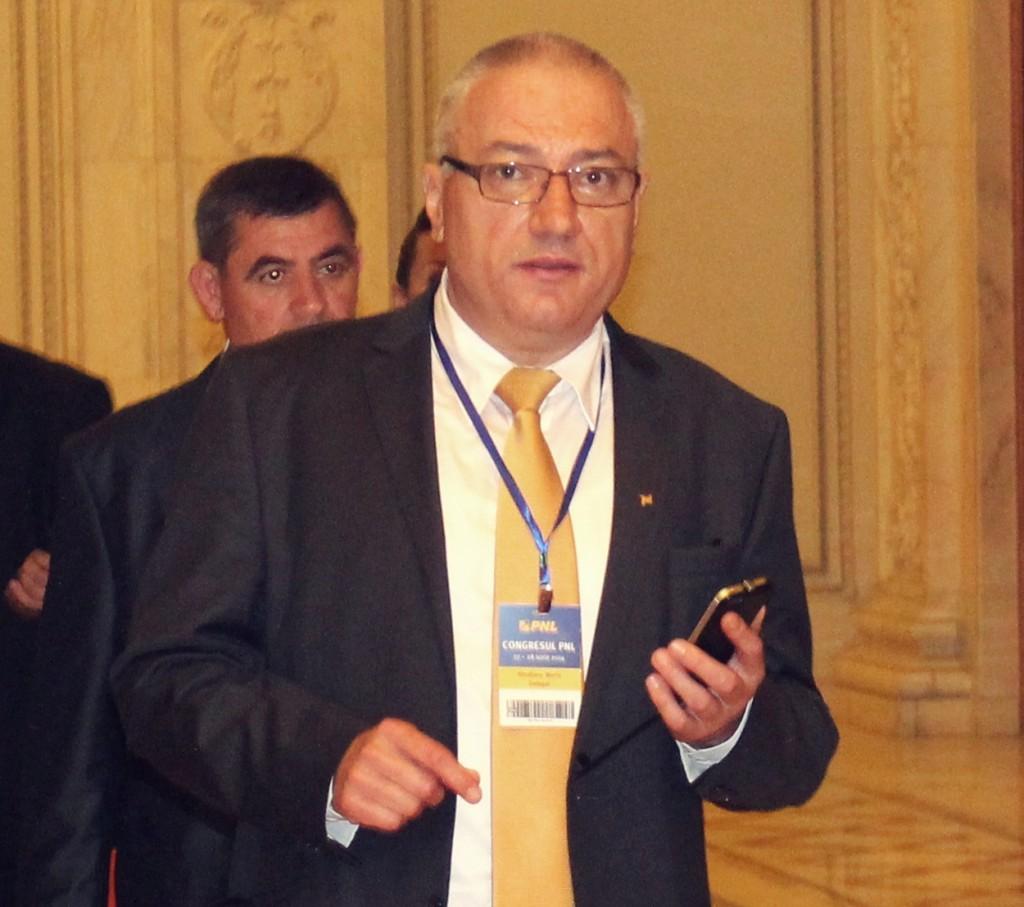 Marin Almajanu