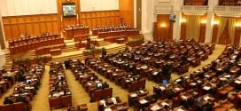 Florică Ică Calotă: Sinteza activității parlamentare în legislatura 2012 – prezent