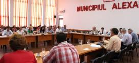Politică şi gramatică, lecţii esenţiale în Consiliul local Alexandria