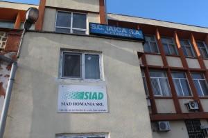 iaica (2)