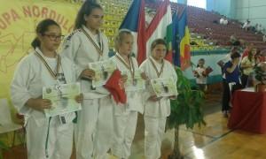 judo css