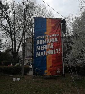 """Pentru că """"România merită mai mult!"""", pesediștii ciopârțesc copaci la Turnu Măgurele ca să pună afișe electorale"""